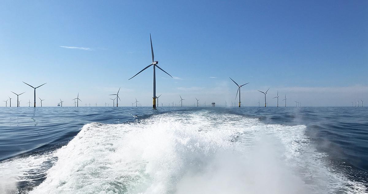 windfarm-linkedin